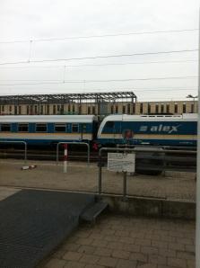 rb-alex