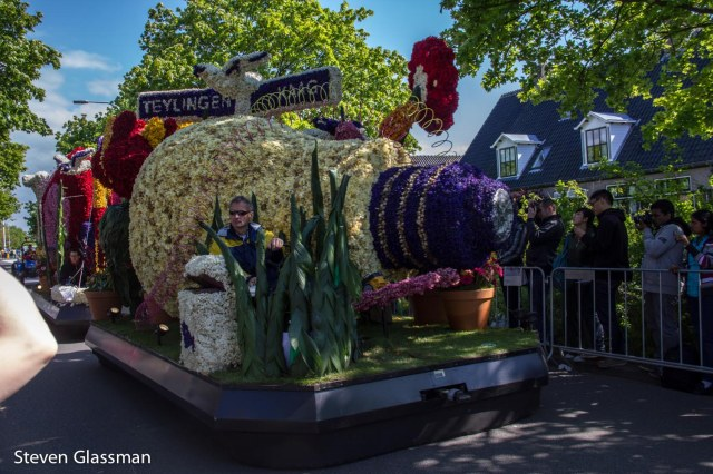 flower-parade-14