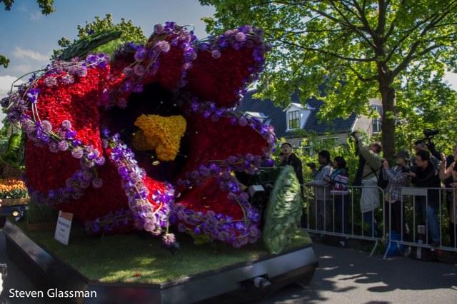 flower-parade-16