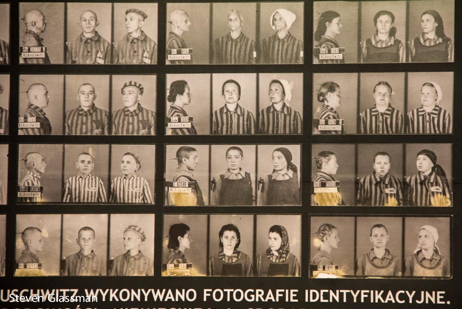 https://stevenglassman.files.wordpress.com/2014/07/auschwitz-9.jpg