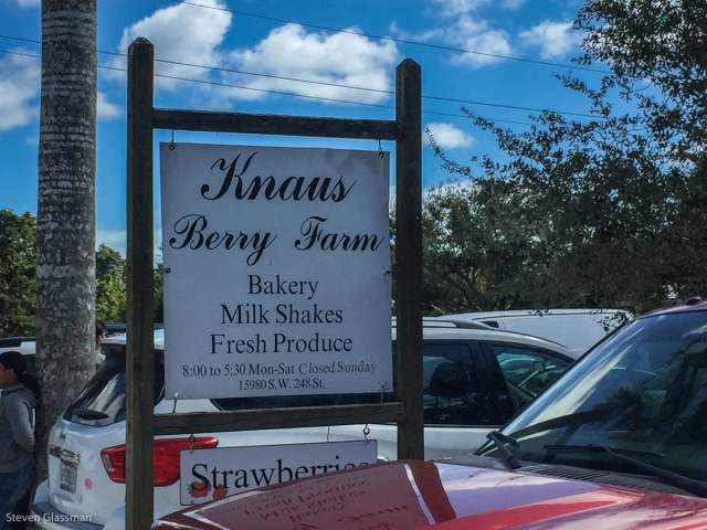 knaus-berry-farms-1