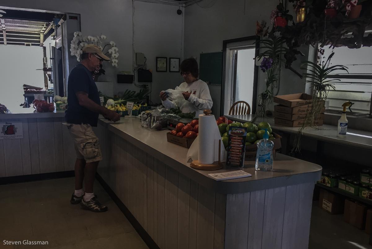 knaus-berry-farms-5