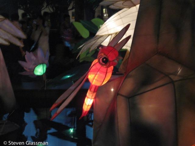 A paper lantern dragonfly.